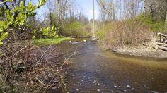 Stony Creek Metropark