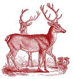 Printable Christmas deer