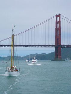 "the adventures of tartanscot™: ""Happy Birthday To You . . . "" golden gate bridge, favorit bridg"