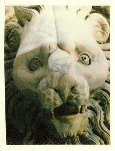 Italianate lion!