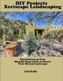 DIY Projects: Xeriscape Landscaping - Landscaping, projects, Xeriscape
