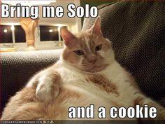 Jabba the Lolcat