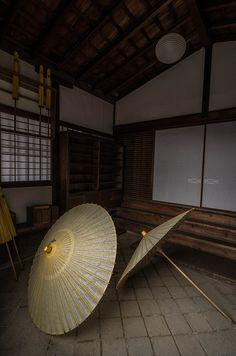 Japanese umbrellas, wagasa