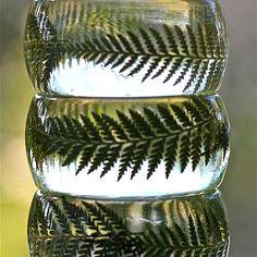 Botanical Bangle Fern from Lissa Liggett on OpenSky