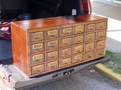 Seed display cabinet