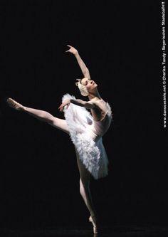 beautiful swan Lunkina <3