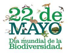 Conmemoramos el Día Internacional de la Biodiversidad, que nos recuerda la importancia de los recursos naturales y su papel fundamental para la vida del planeta.