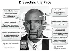 Deciphering The Face