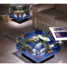 shop, coffee tables, around the house, fountain, aquarium, glass, furniture decor, light, coffe tabl