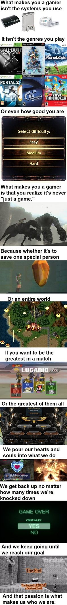 What Makes One a Gamer