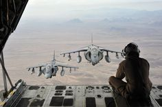 Harriers following a man sitting in an airplane