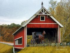 By Tom Griffithe  Amish Era Photograph  - Amish Era Fine Art Print