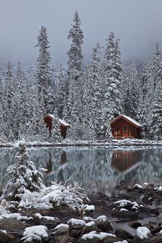 Rustic Cabins of Lake O'Hara Lodge in Snow by Lee Rentz