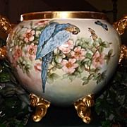 Limoges Huge Footed/Handled Jardiniere Apricot Wild Roses/Blue Parrot/Butterflies  All Things Love-lee
