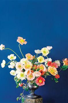 Poppies  ranunculus. A fabulous combo.   via @FlowerMagazine