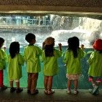 Registration is now open for this summer's AquaCamps at the Vancouver Aquarium. www.vanaqua.org