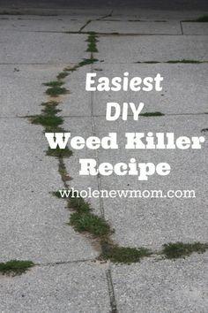 Natural Weed Killer - Super simple and No Toxins!!!