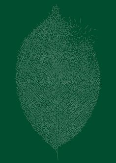 Leaf by Shun Sasaki, spoom-tamago #Illustration #Leaf #Shun_Sasaki