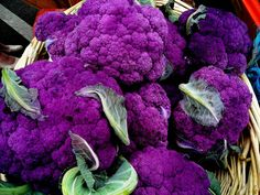 Merlin's Magic Cauliflower