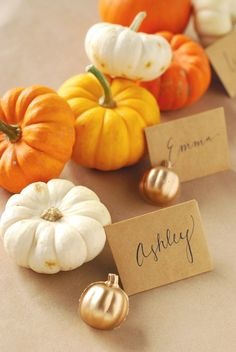 DIY Concrete Pumpkin Place Card Holders