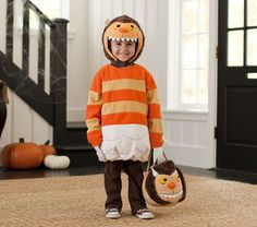 Where The Wild Things Are Monster Costume | Pottery Barn Kids (Jack can wear this and Max will be Max)