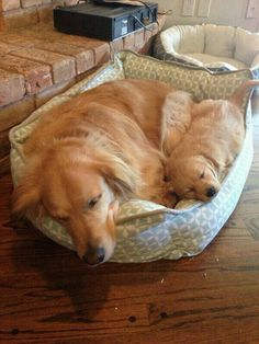 No need for two beds
