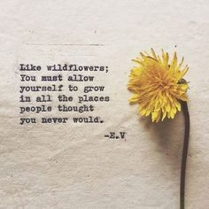 """""""Like wildflowers; you must allow yourself to grow in all the places people thought you never would"""""""
