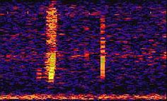 The Bloop: A Mysterious Sound from the Deep Ocean