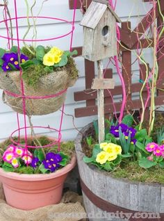 Tomato Cage Tiered Planter - clever!