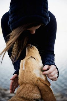 Is your dog your best friend? Here are 10 tell-tale signs!