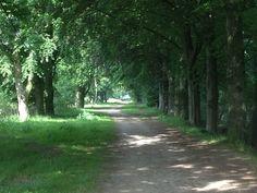 Leemputten, Udenhout N.B.