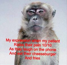As they laugh on the phone and eat their cheeseburger and fries- OMG YES!!! I cannot stand helping people who do this in the ER.