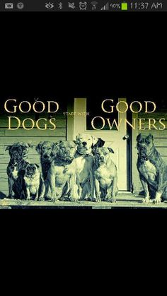 Good dogs Good owners