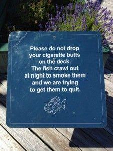 Fish? Smoking? Lol