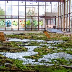 Inside Grossinger's Crumbling Catskill Resort Hotel, NY. Enclosed pool area, now covered in a carpet of moss.