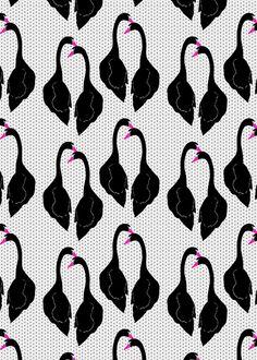 Black Swans Pattern by Georgiana Paraschiv