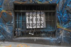 Humans are the real predators - Hosier Lane, Melbourne.
