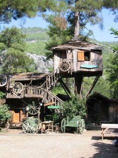 Ramshackle Western Tree House