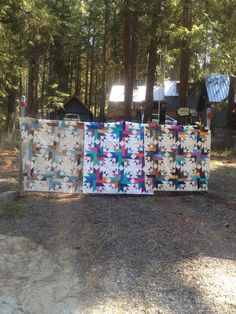 August 12 - Featured Quilts on 24 Blocks
