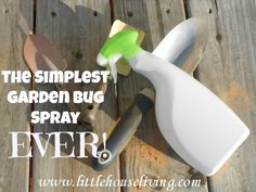 This is the easiest recipe for bug spray for your garden but it really works! | via @Merissa Alink (Little House Living)