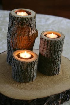 candles in tree trunks