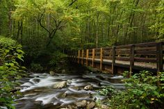 Great Smoky Mountains National Park | Great Smoky Mountains National Park