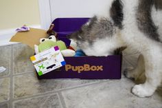 PupBox- the monthly