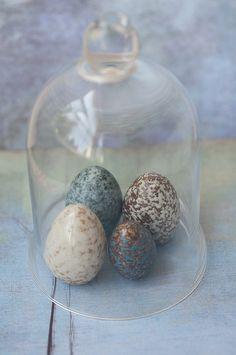 ,,** & eggs