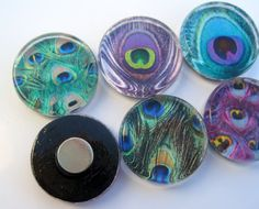 Peacock Feather Magnets  Glass Magnets  by StuckTogetherMagnets, $10.50