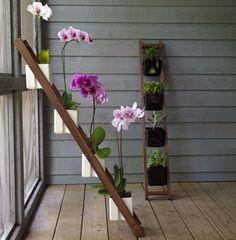 ladder, potting plants, potted plants, colors, balconies, gardens, planter, apartments, flowers garden