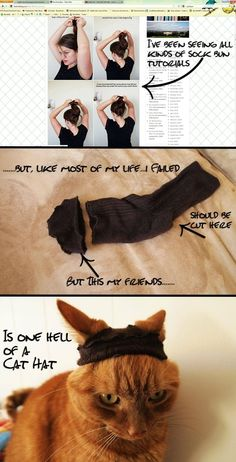 Few things excite me more than Pinterest fails... This is for anyone who has tried the sock bun: If all else fails, sock bun-ify your cat.