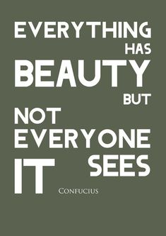 Everything Has Beauty