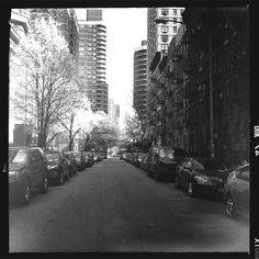Spring in black and white #photobyasiaminor