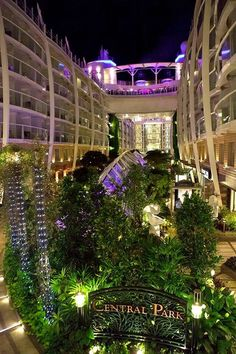 Oasis of the Seas - Central Park! My fave place onboard!